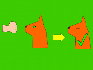 One easy way to check your dog or cat vision at home is through the menace response test. To do this just pretend you are hitting your dog which will trigger a reflex response resulting in the dog closing the eyes and possibly turning the head away. This response will let you know that the visual pathway in the nervous system of your dog is intact.