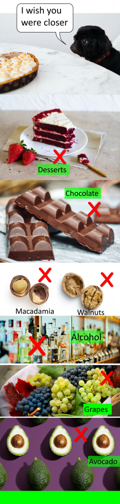 Foods not allowed as dog treats (not at all considered healthy dog treats): Desserts (sugary foods), chocolate, macadamia nuts and walnuts, alcohol in any form, cooked bones (likely to splinter) grapes, onion and garlic, avocado
