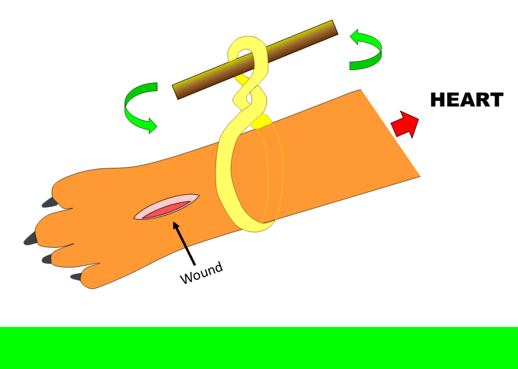 A tourniquet can be used as an extreme measure to stop bleeding in the limbs or tail. Place it around the limb or tail, between the wound and the heart (as depicted), twist around to create a circulation blockage, and leave pressure for 10 minutes. After 10 minutes check if bleeding continues. If so, let bleed for 30 seconds and twist again. Get veterinary help as soon as possible.